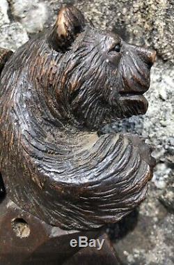 Antique Glass Eyes Dual Bear Black Forest Nutcracker Circa 1880 Casse Noix