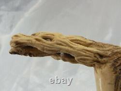 Canne Dandy Pommeau Cervide Sculpte Fut Bois Antique Silver Ring Walking Stick