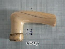 Color Pommel Cane Bone Ivory Old Window Object Of Curiosity Vintage