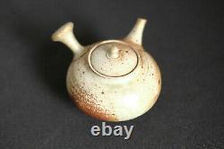 Japanese Ceramic Teapot Kyusu Teapot 250 ML / Shiraiwa Taisuke