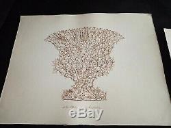 Rare Old Herbarium Alguier Or Seagrass Seaweed Nineteenth Century Specimen 43