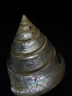 Shell Engraved With Mother-of-pearl Sailor New Caledonia Late 19th