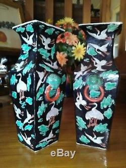 Paire de Vases Chinois Guangxu XIXeme